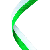 Green & White Ribbon feature image