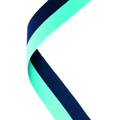 Navy Blue & Sky Blue Ribbon feature image