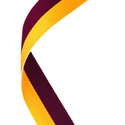 Maroon & Gold Ribbon feature image