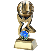 3D NETBALL AWARD feature image